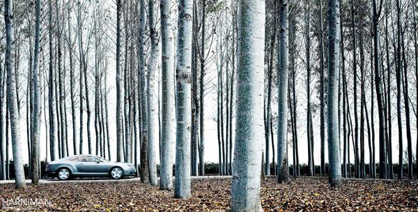 Bentley Continental GT Spain
