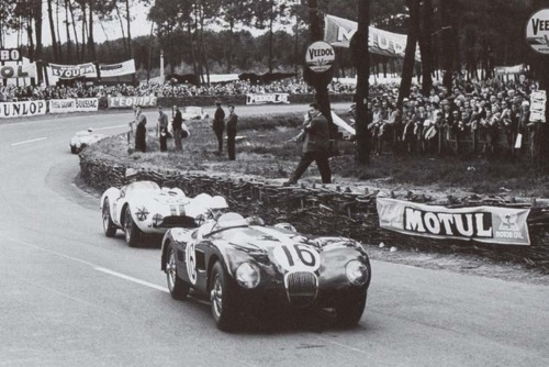 Jaguar C-Type Lemans, Image supplied by ATME