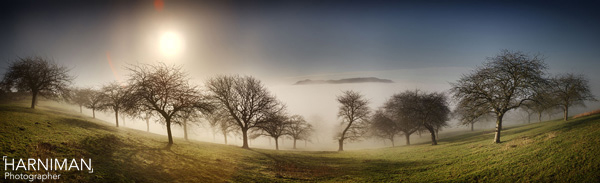 Hill in the mist