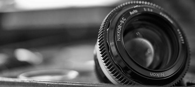 Nikon Glass Menagerie